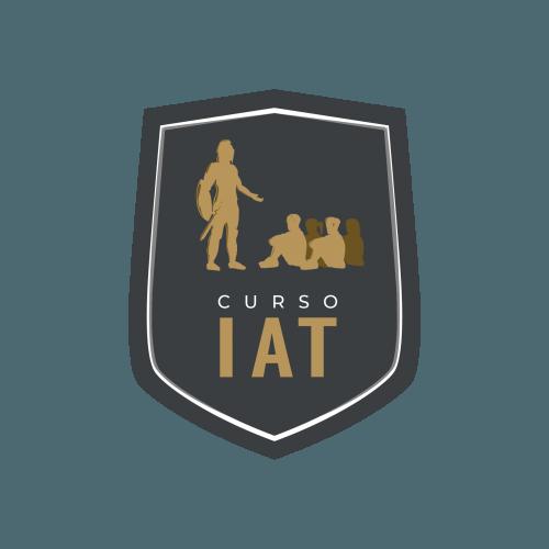 Curso de Formação de Instrutor de Armamento e Tiro