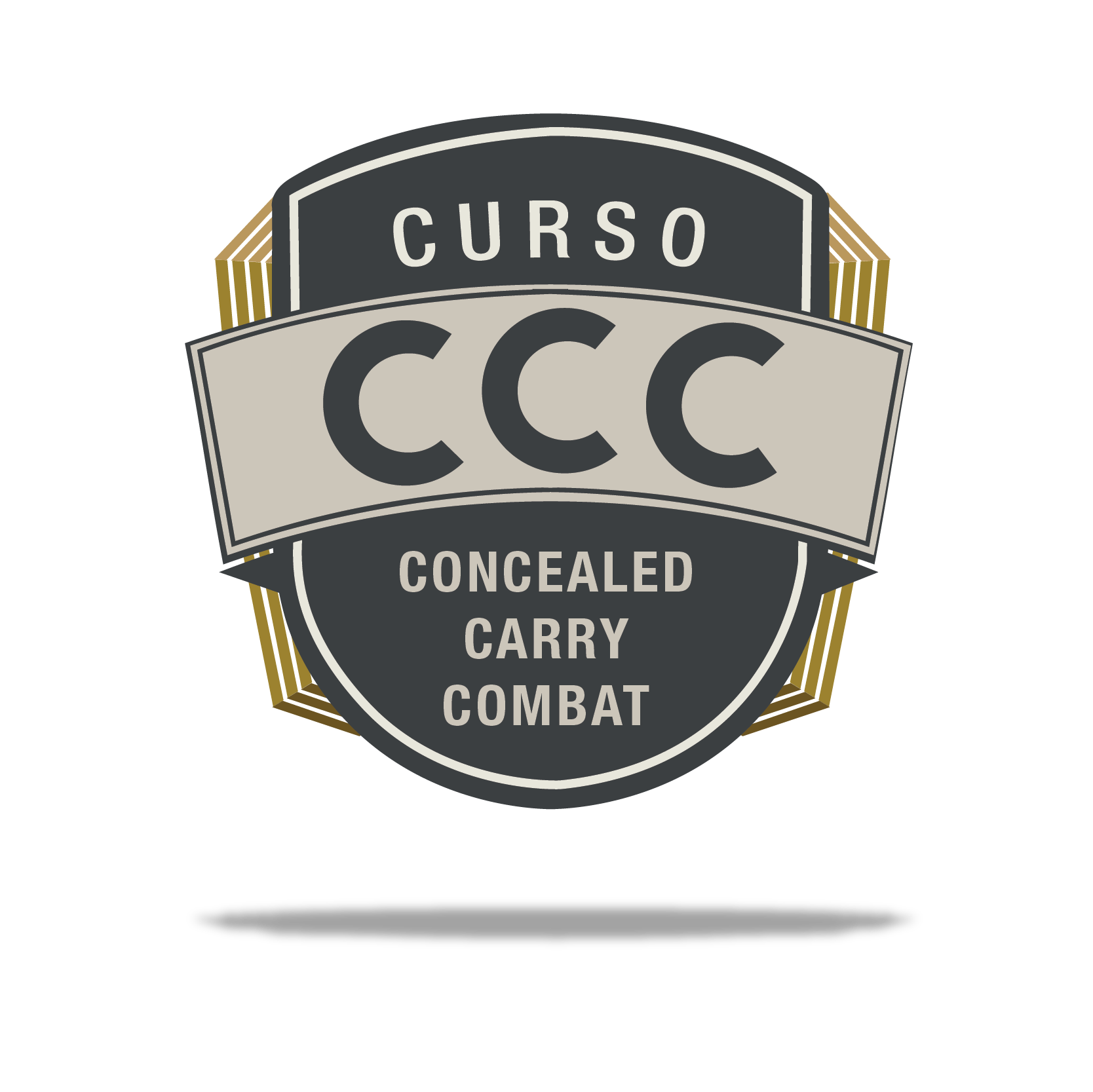 Concealed Carry Combat